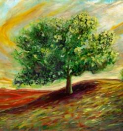 Mid_Largetree