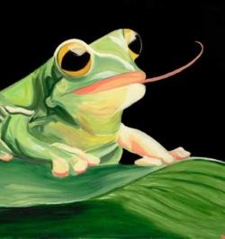 Treefrog-Yelloweyes